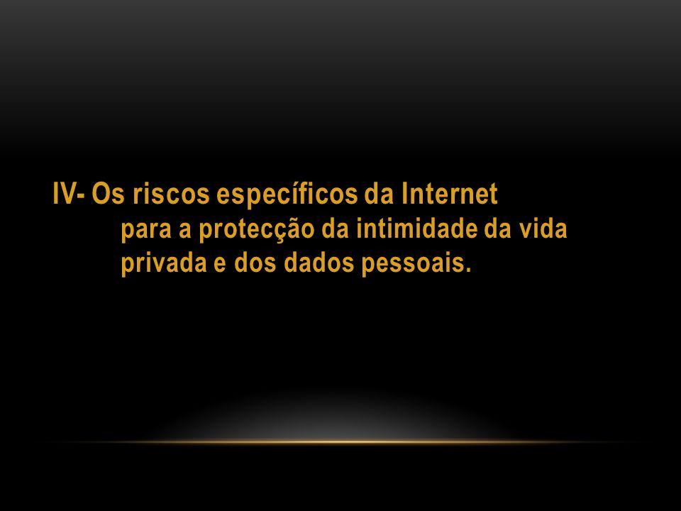 IV- Os riscos específicos da Internet
