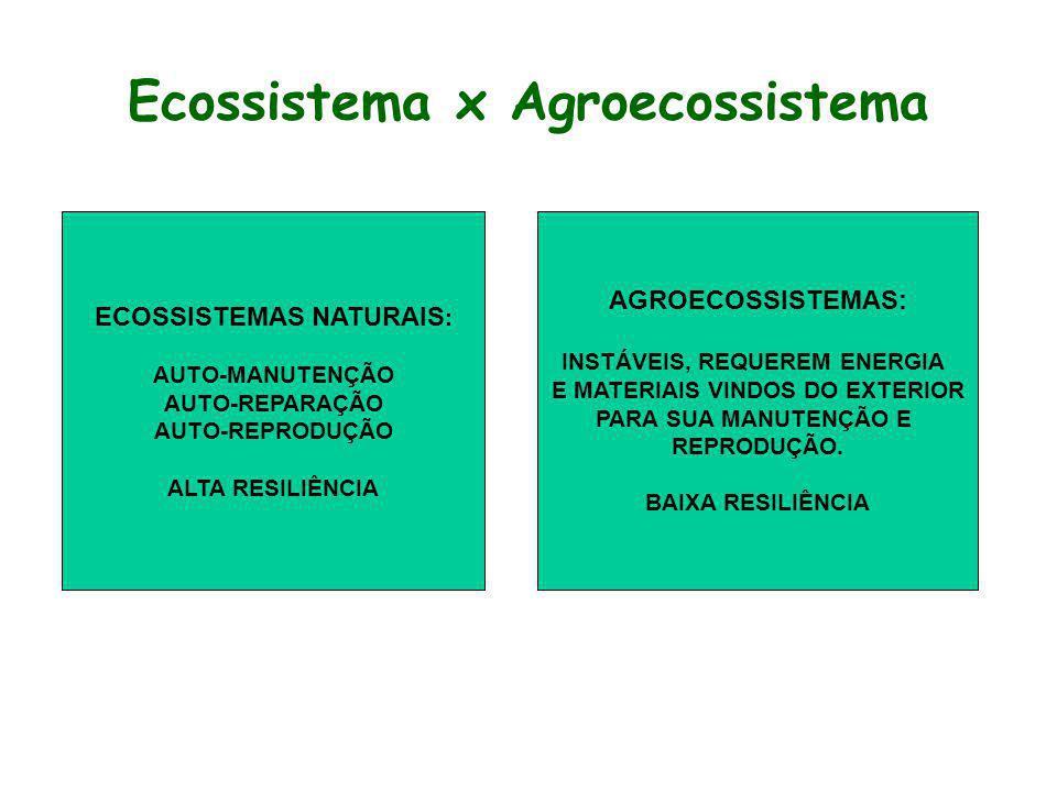 Ecossistema x Agroecossistema