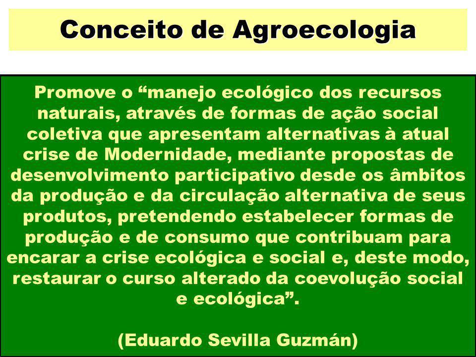 Conceito de Agroecologia (Eduardo Sevilla Guzmán)