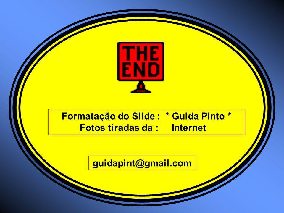 Formatação do Slide : * Guida Pinto *