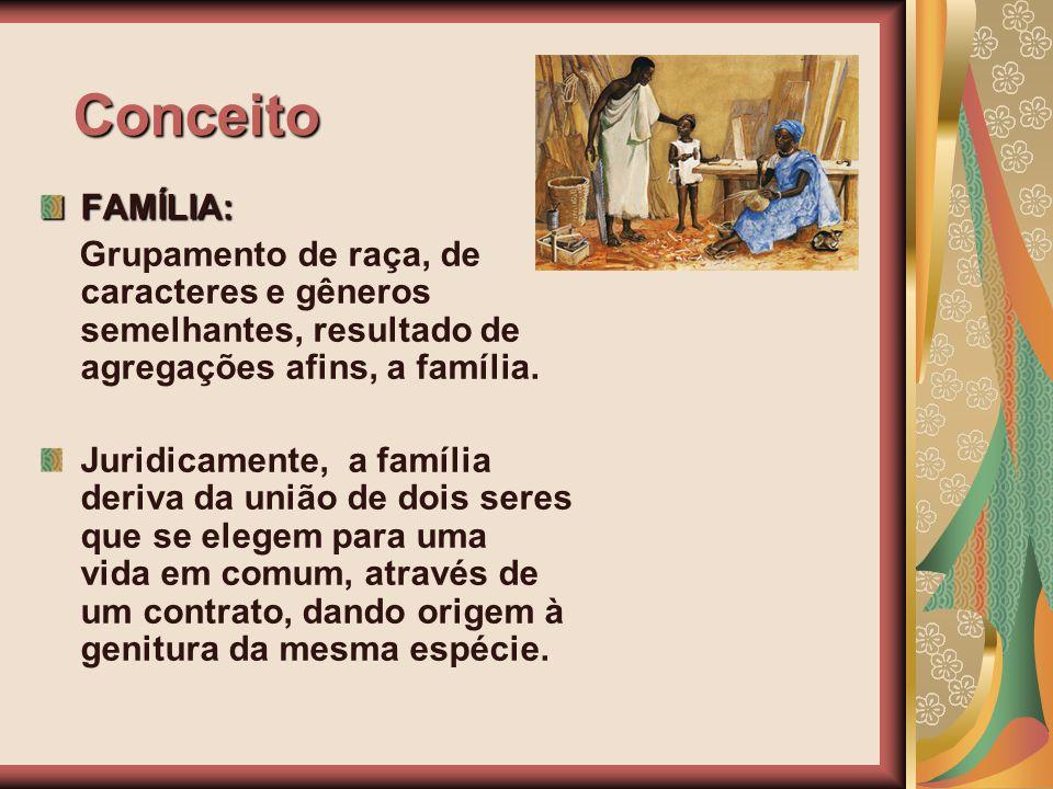 Conceito FAMÍLIA: Grupamento de raça, de caracteres e gêneros semelhantes, resultado de agregações afins, a família.