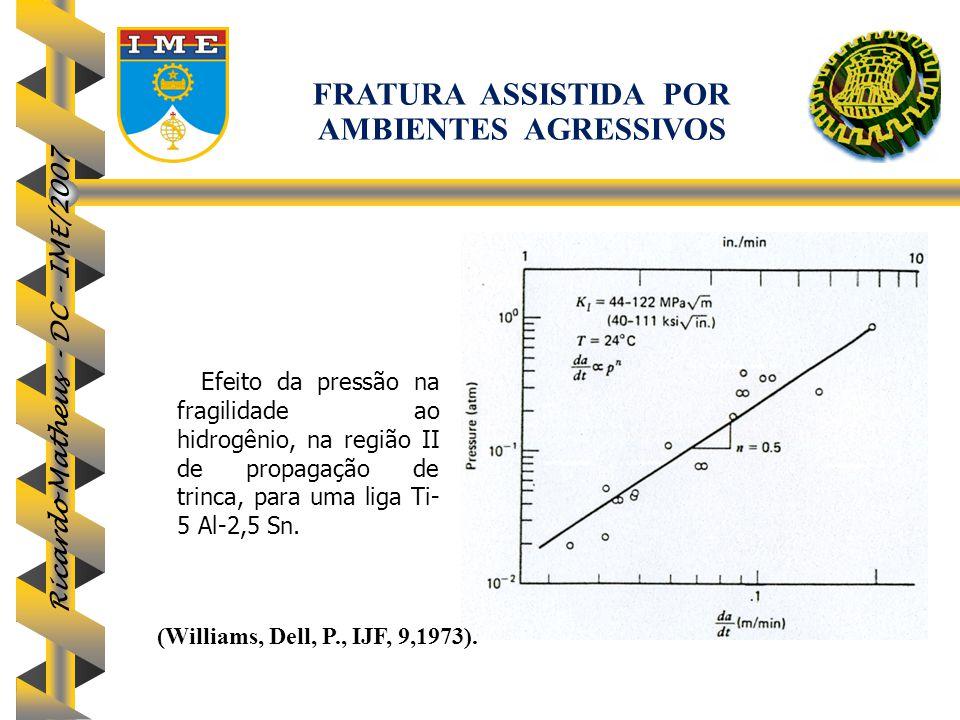 FRATURA ASSISTIDA POR AMBIENTES AGRESSIVOS