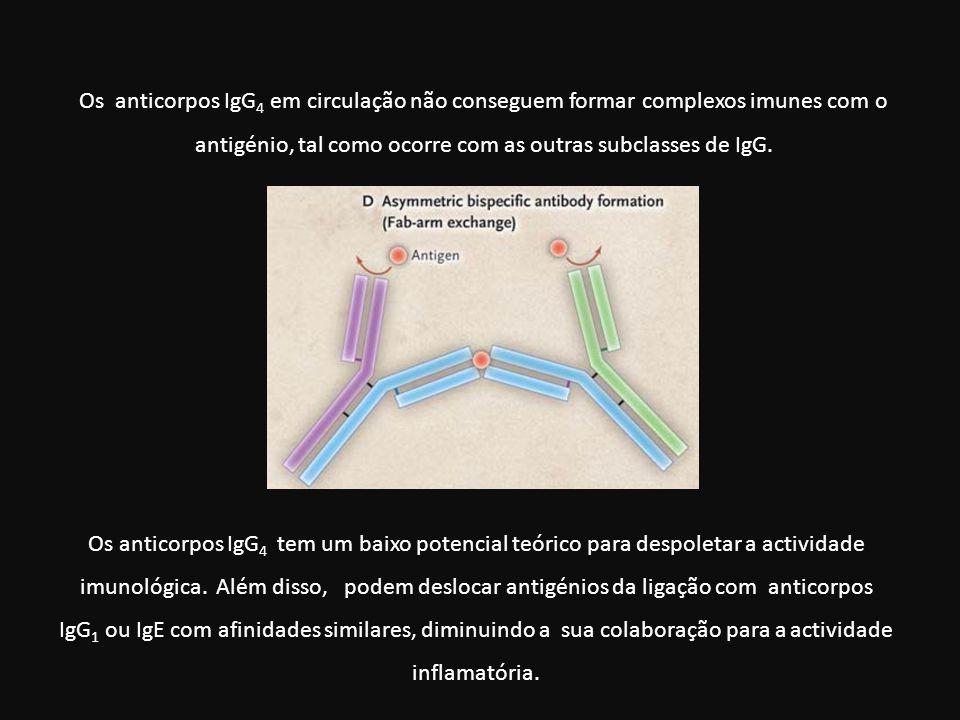 Os anticorpos IgG4 em circulação não conseguem formar complexos imunes com o antigénio, tal como ocorre com as outras subclasses de IgG.