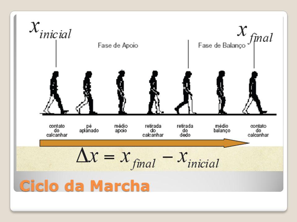 Ciclo da Marcha