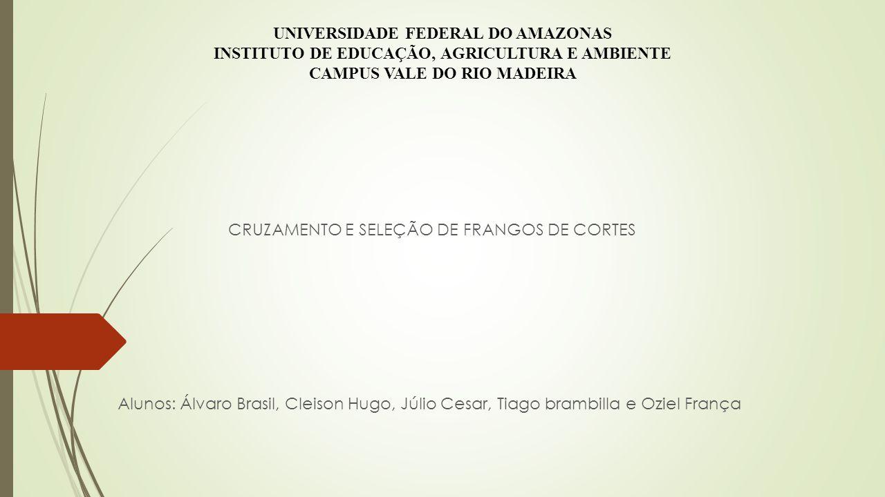UNIVERSIDADE FEDERAL DO AMAZONAS INSTITUTO DE EDUCAÇÃO, AGRICULTURA E AMBIENTE CAMPUS VALE DO RIO MADEIRA
