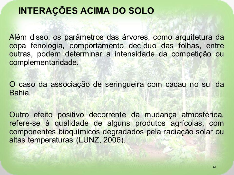 INTERAÇÕES ACIMA DO SOLO
