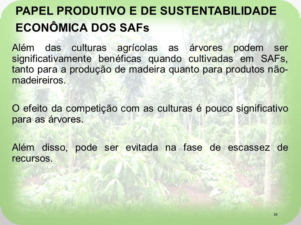 PAPEL PRODUTIVO E DE SUSTENTABILIDADE ECONÔMICA DOS SAFs