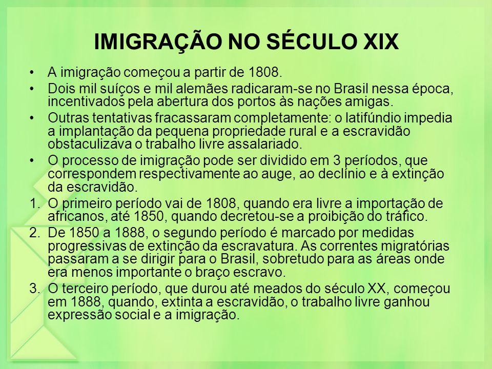 IMIGRAÇÃO NO SÉCULO XIX