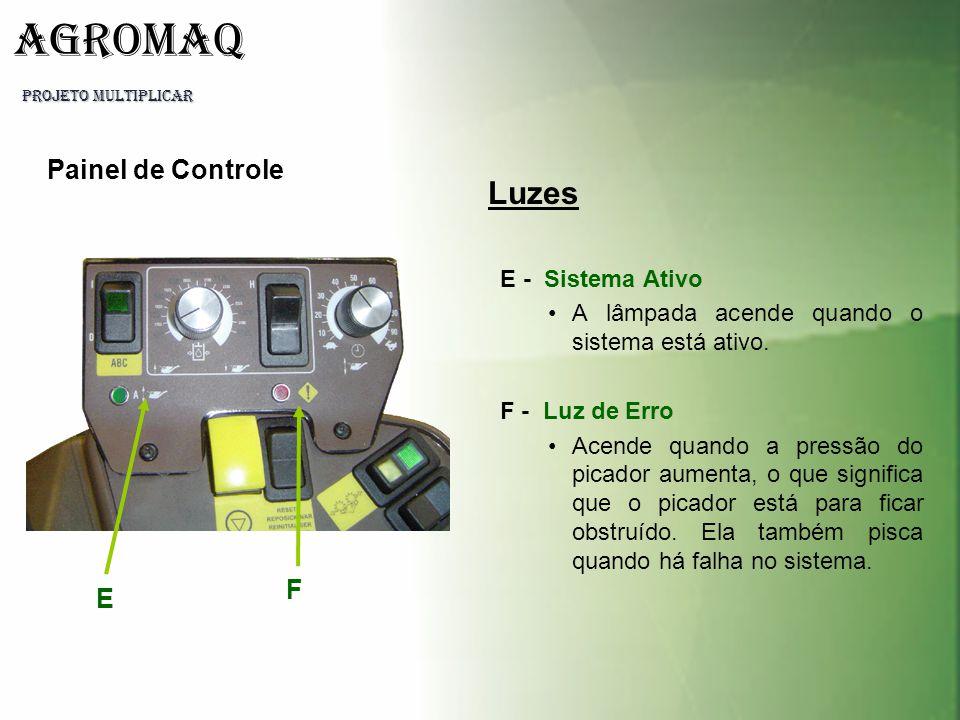 Luzes Painel de Controle F E E - Sistema Ativo