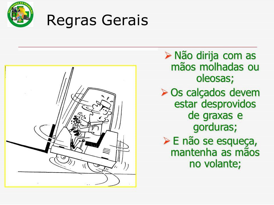 Regras Gerais Não dirija com as mãos molhadas ou oleosas;