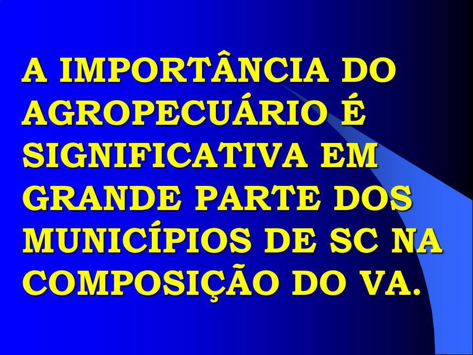 A IMPORTÂNCIA DO AGROPECUÁRIO É SIGNIFICATIVA EM GRANDE PARTE DOS MUNICÍPIOS DE SC NA COMPOSIÇÃO DO VA.