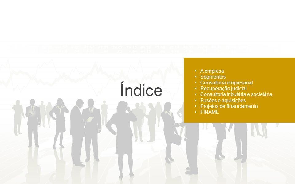 Índice A empresa Segmentos Consultoria empresarial