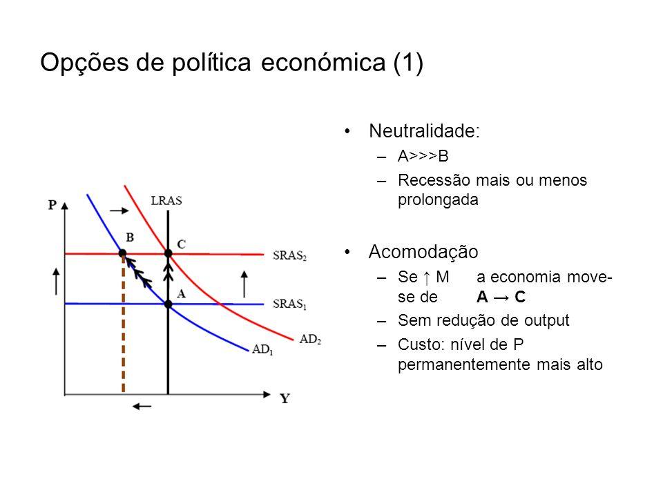 Opções de política económica (1)