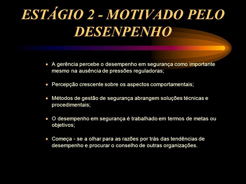 ESTÁGIO 2 - MOTIVADO PELO DESENPENHO