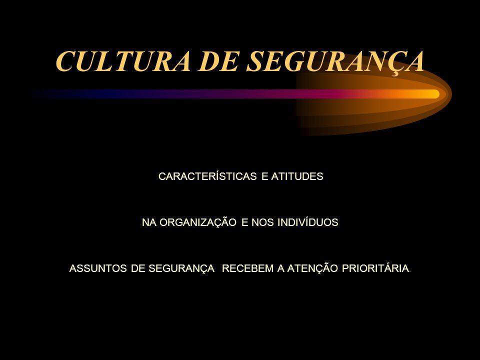 CULTURA DE SEGURANÇA NA ORGANIZAÇÃO E NOS INDIVÍDUOS