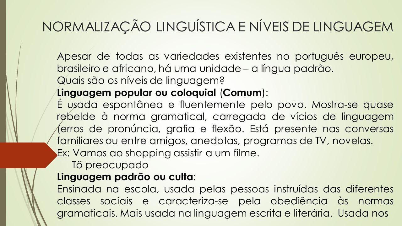 NORMALIZAÇÃO LINGUÍSTICA E NÍVEIS DE LINGUAGEM