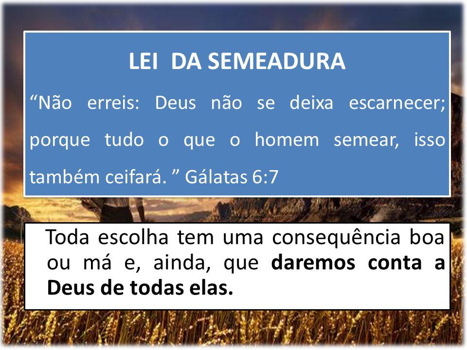 LEI DA SEMEADURA Não erreis: Deus não se deixa escarnecer; porque tudo o que o homem semear, isso também ceifará. Gálatas 6:7.