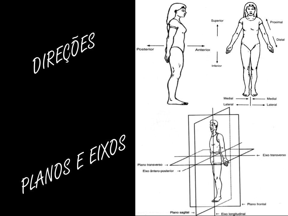 DIREÇÕES PLANOS E EIXOS