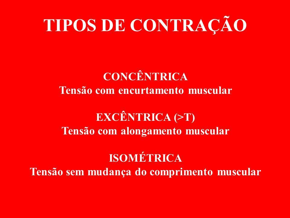 TIPOS DE CONTRAÇÃO CONCÊNTRICA Tensão com encurtamento muscular