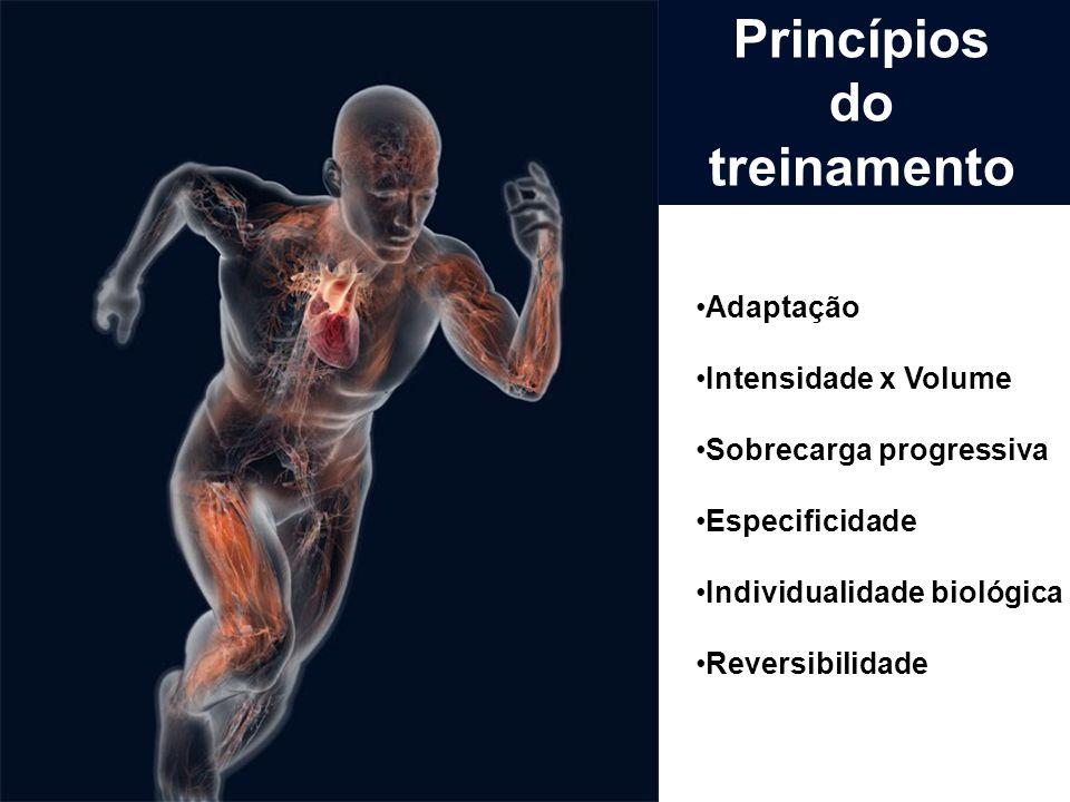 Princípios do treinamento
