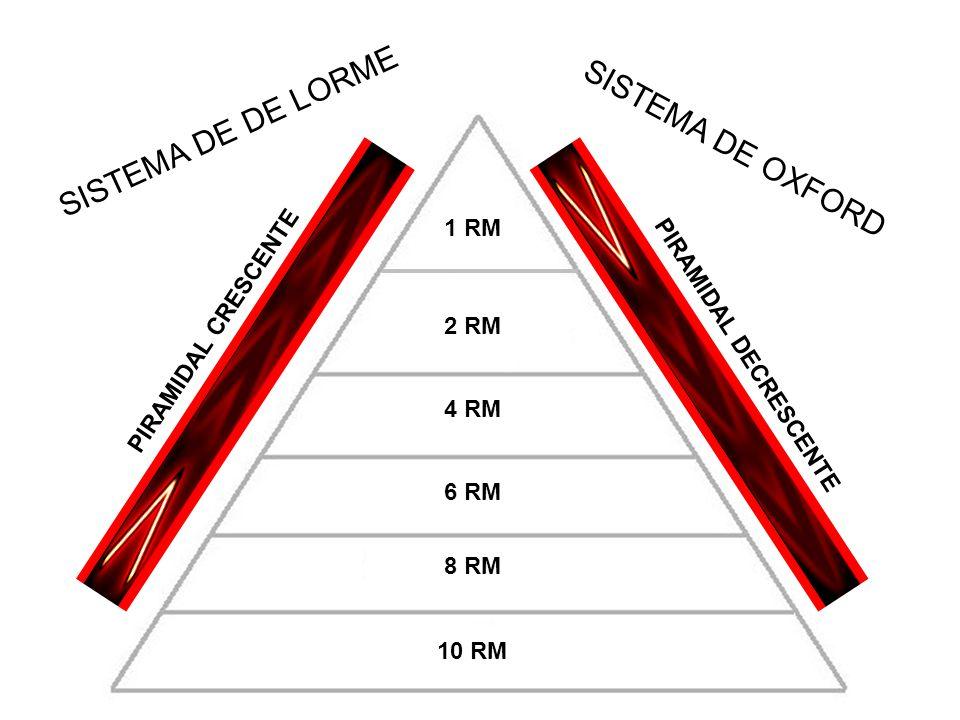 SISTEMA DE DE LORME SISTEMA DE OXFORD 1 RM PIRAMIDAL CRESCENTE