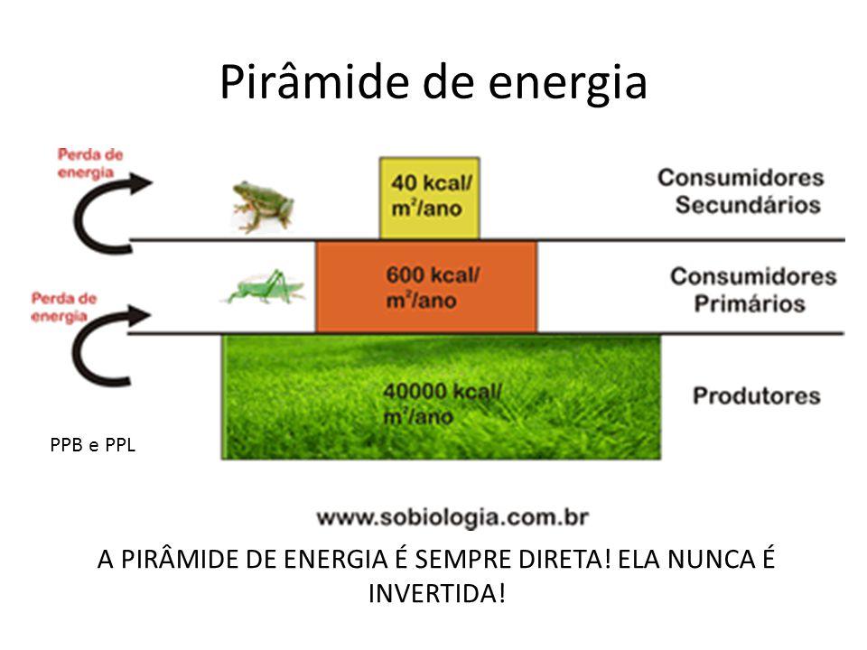 A PIRÂMIDE DE ENERGIA É SEMPRE DIRETA! ELA NUNCA É INVERTIDA!