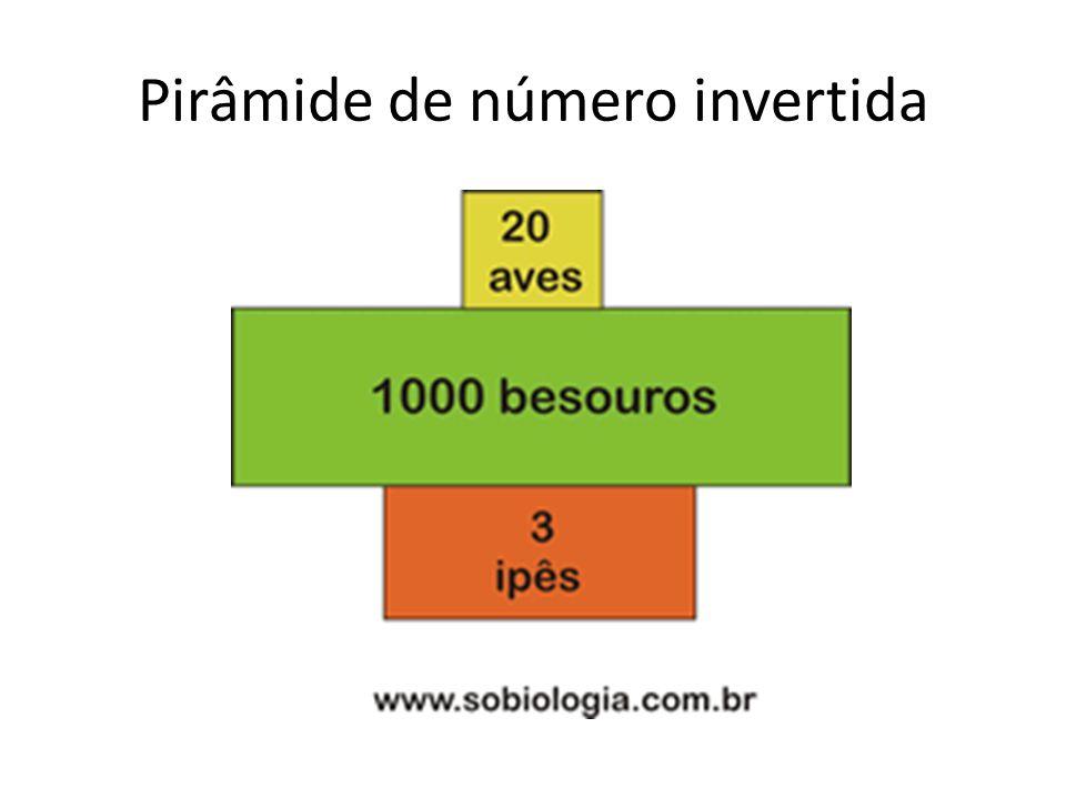 Pirâmide de número invertida
