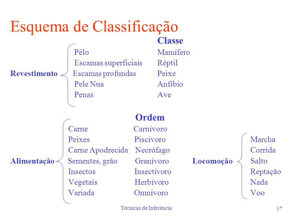 Esquema de Classificação