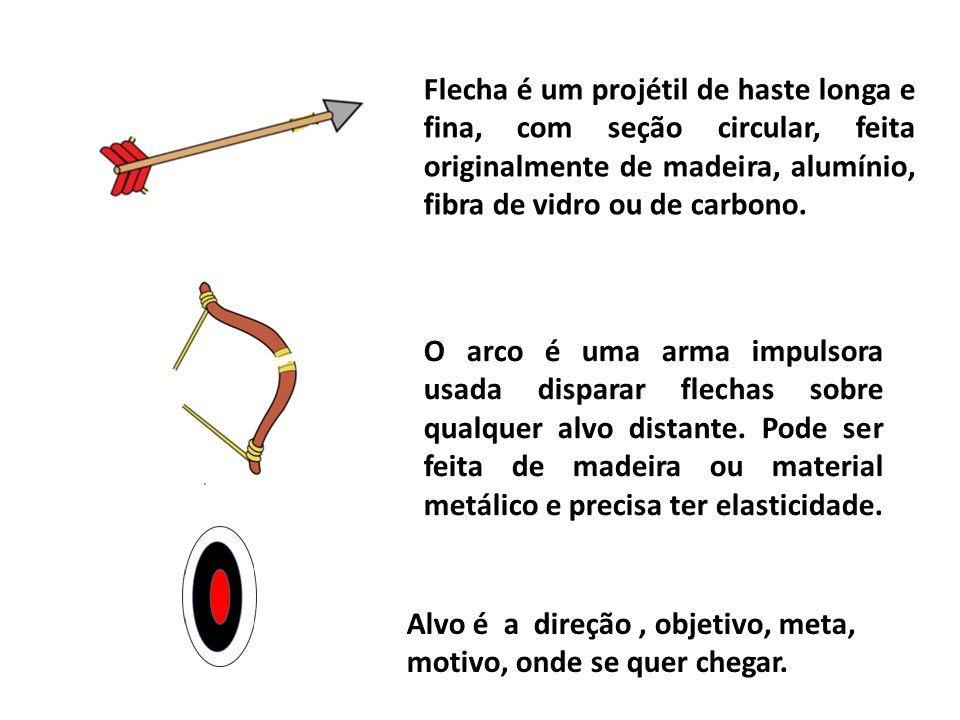 Flecha é um projétil de haste longa e fina, com seção circular, feita originalmente de madeira, alumínio, fibra de vidro ou de carbono.
