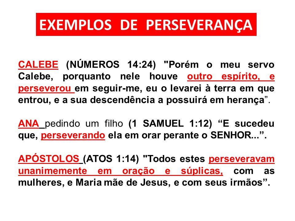 EXEMPLOS DE PERSEVERANÇA