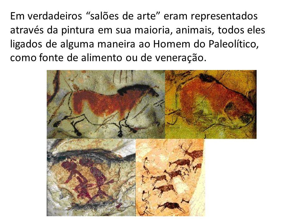 Em verdadeiros salões de arte eram representados através da pintura em sua maioria, animais, todos eles ligados de alguma maneira ao Homem do Paleolítico, como fonte de alimento ou de veneração.
