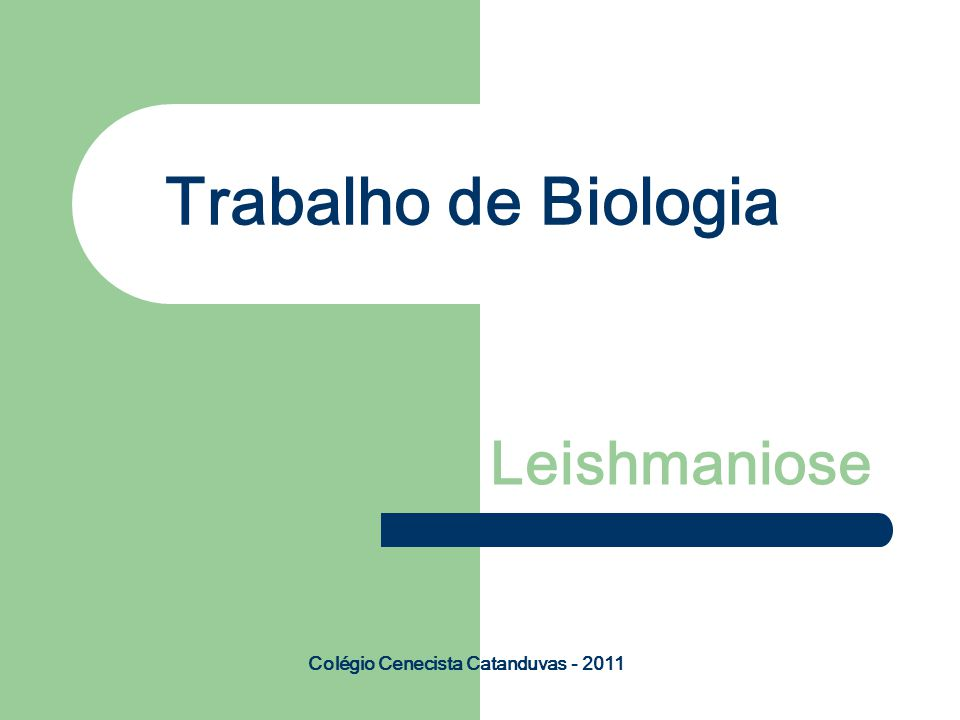 Trabalho de Biologia Leishmaniose Colégio Cenecista Catanduvas - 2011