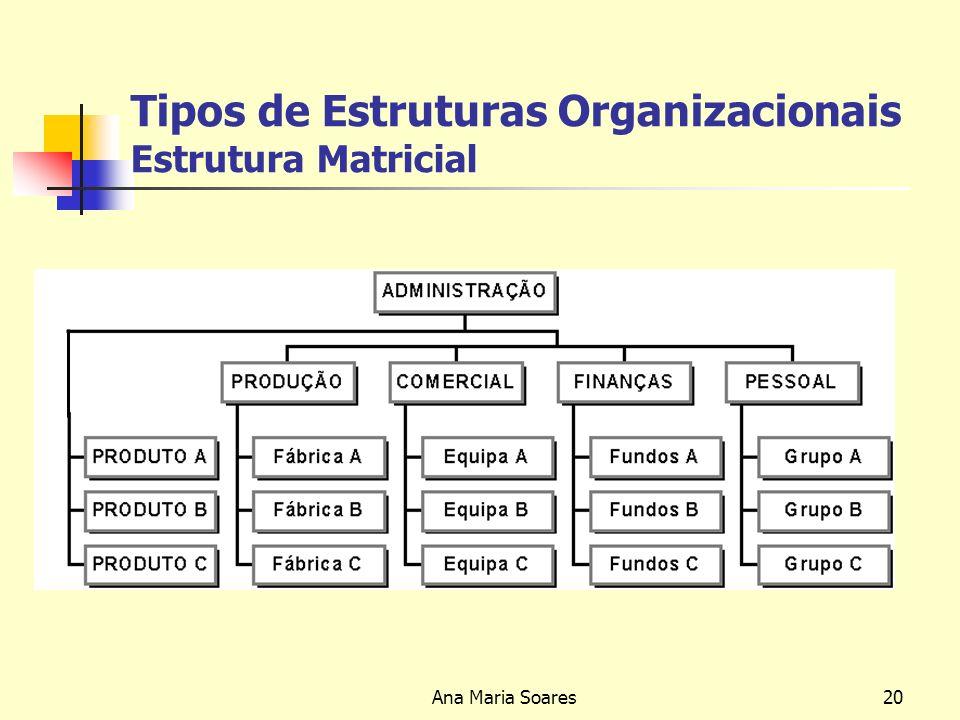 Tipos de Estruturas Organizacionais Estrutura Matricial