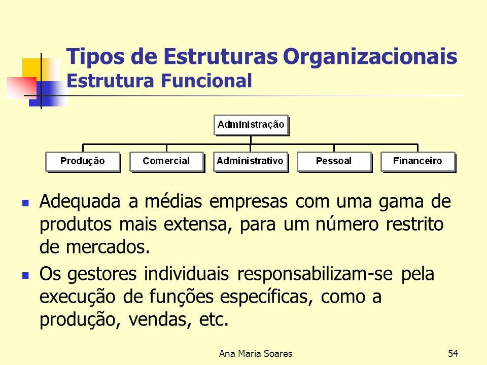 Tipos de Estruturas Organizacionais Estrutura Funcional