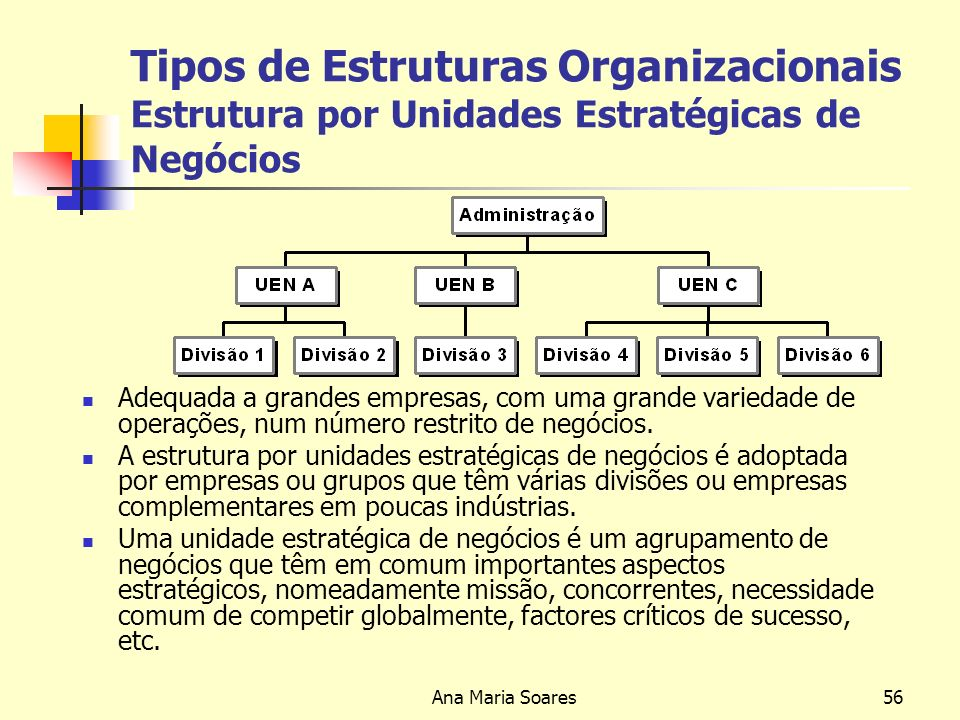 Tipos de Estruturas Organizacionais Estrutura por Unidades Estratégicas de Negócios