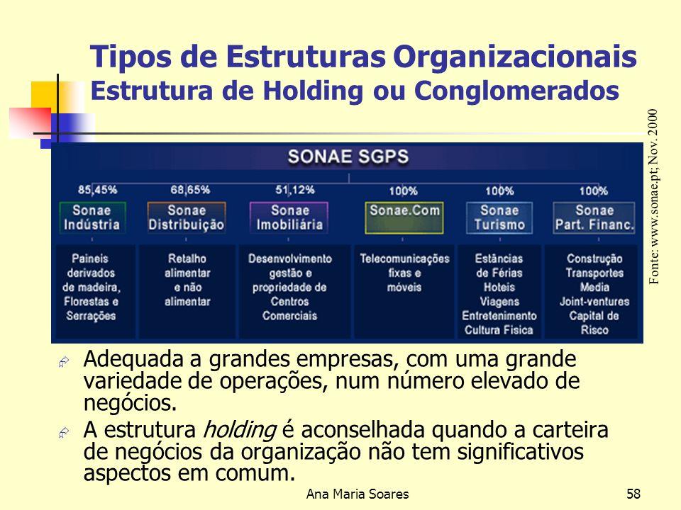 Tipos de Estruturas Organizacionais Estrutura de Holding ou Conglomerados