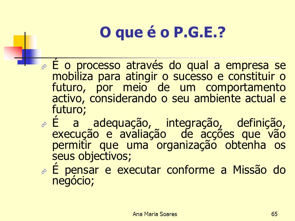 O que é o P.G.E.