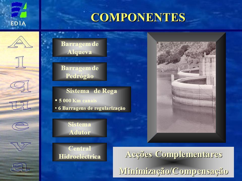 Central Hidroeléctrica Acções Complementares Minimização/Compensação