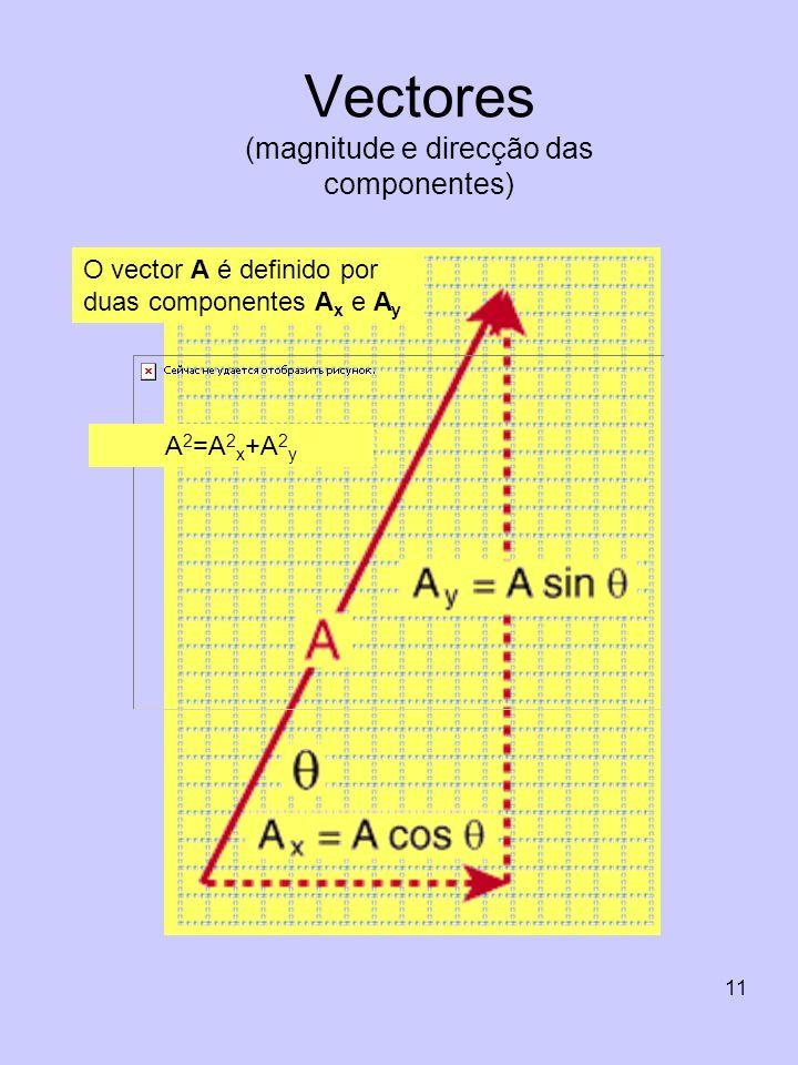 Vectores (magnitude e direcção das componentes)