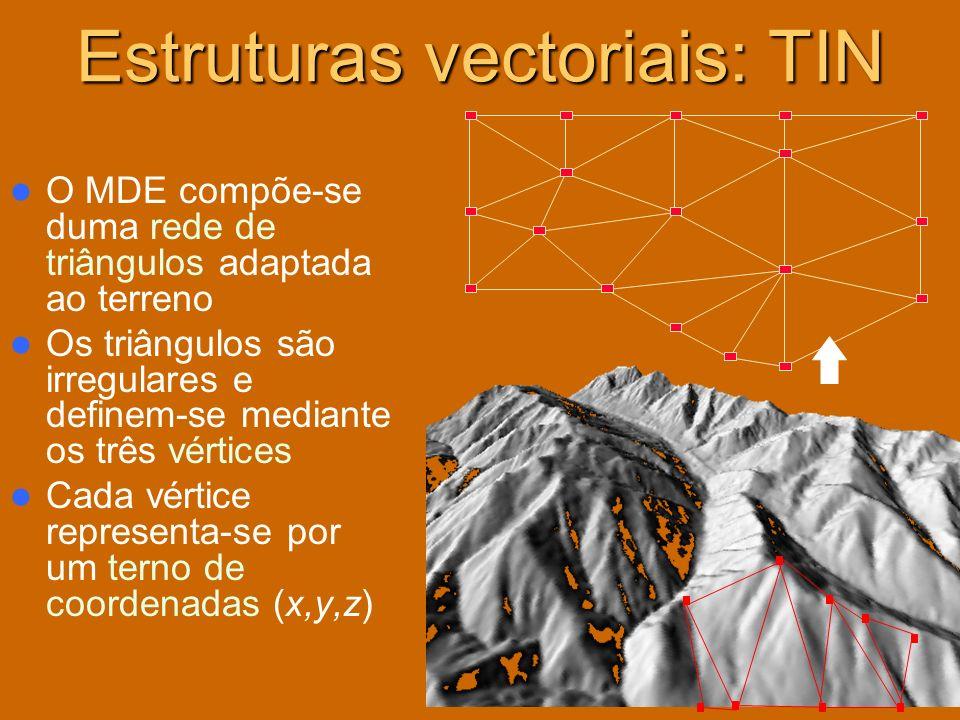 Estruturas vectoriais: TIN