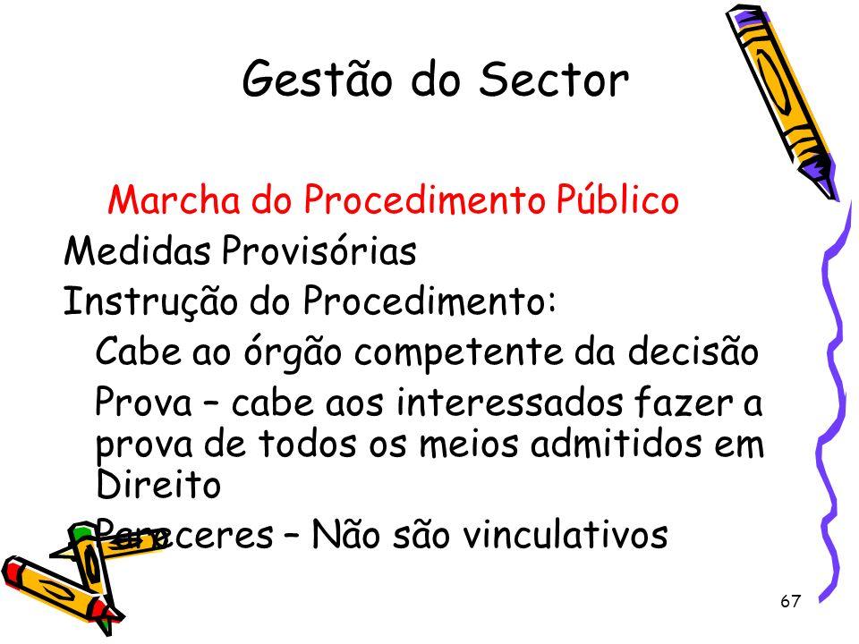 Gestão do Sector Marcha do Procedimento Público Medidas Provisórias