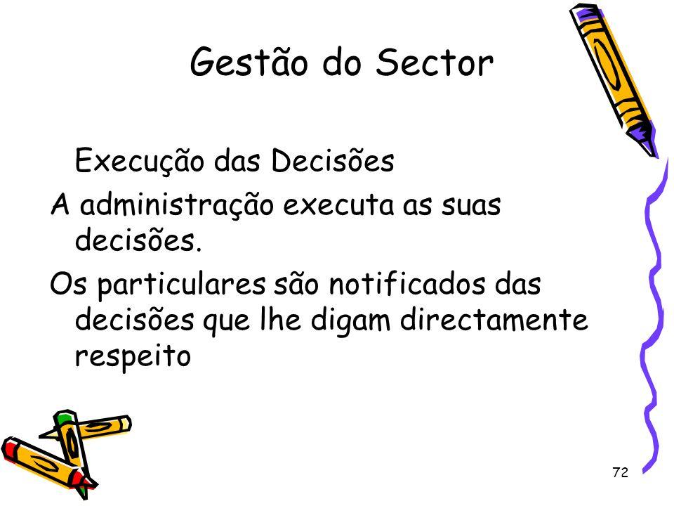 Gestão do Sector Execução das Decisões