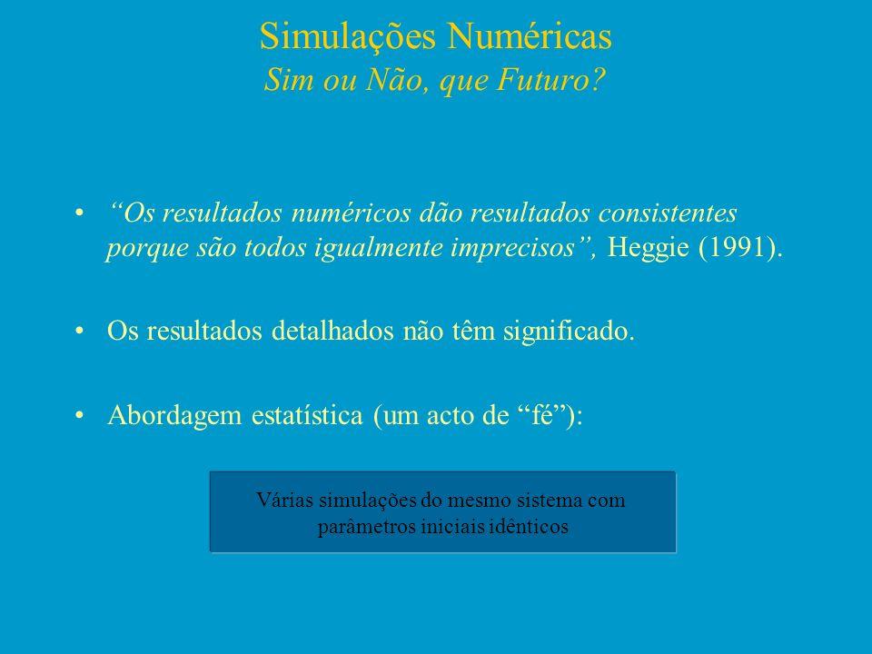 Simulações Numéricas Sim ou Não, que Futuro