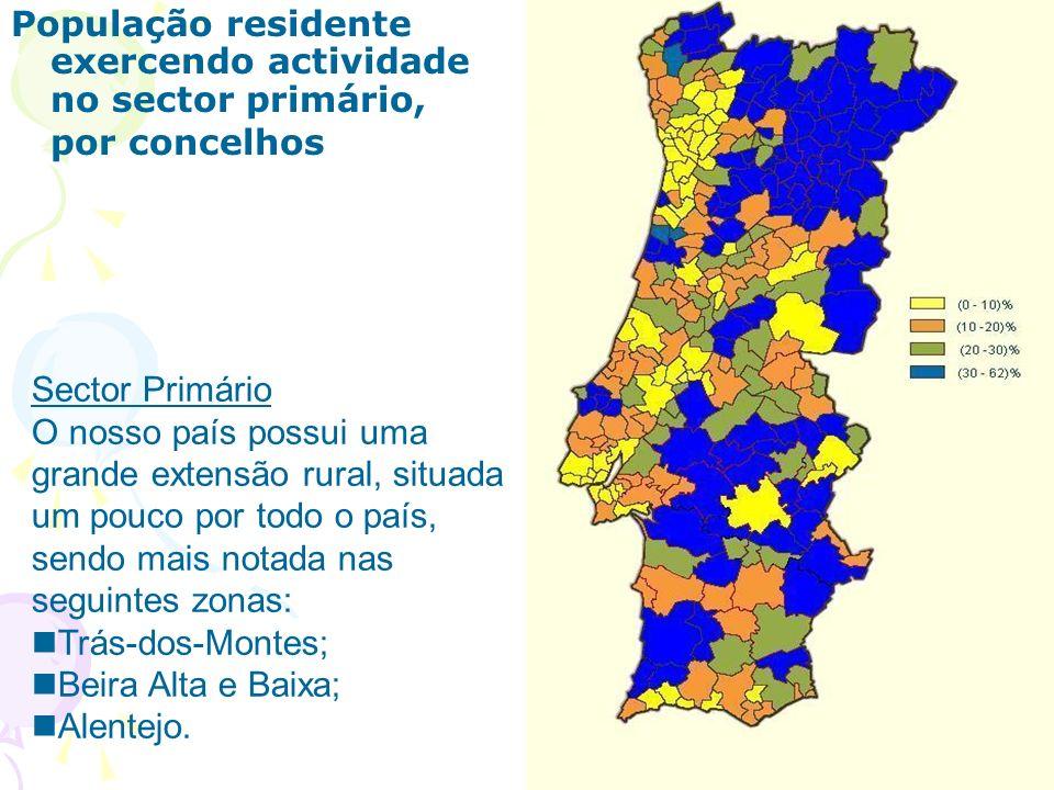 População residente exercendo actividade no sector primário, por concelhos