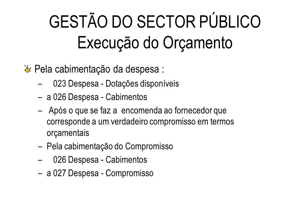 GESTÃO DO SECTOR PÚBLICO Execução do Orçamento