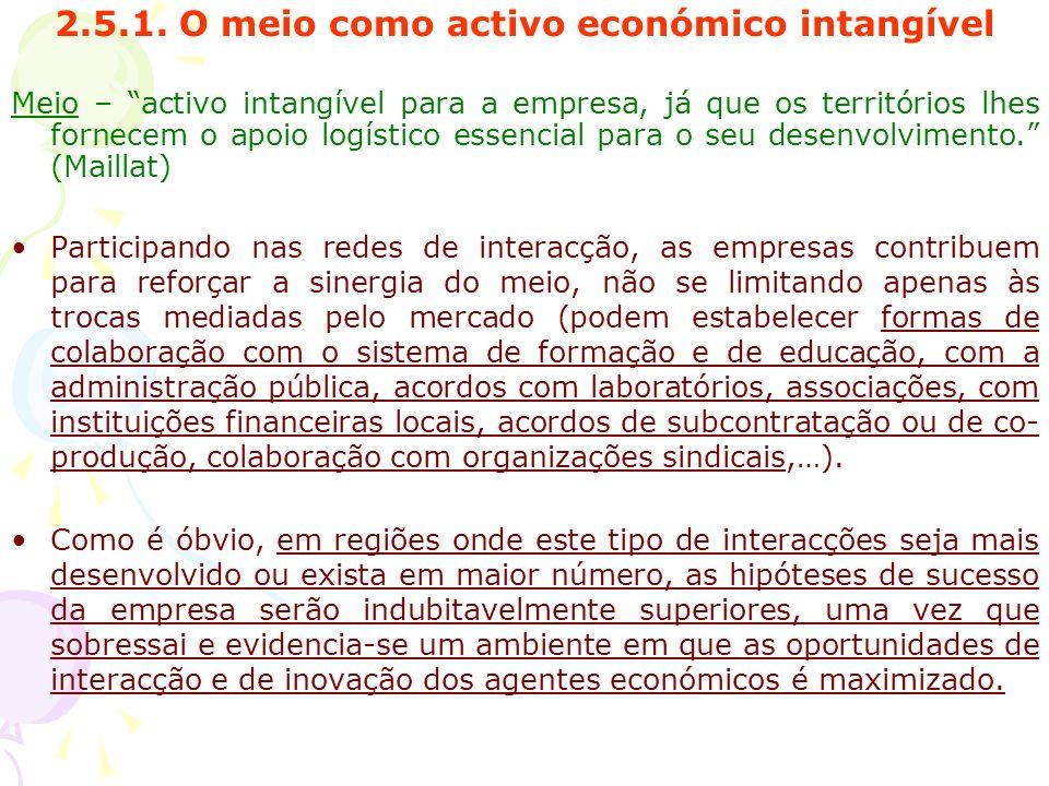 2.5.1. O meio como activo económico intangível