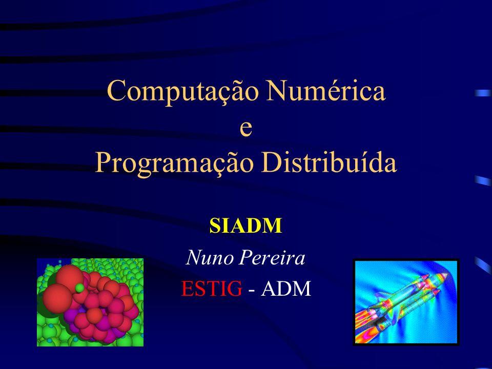 Computação Numérica e Programação Distribuída
