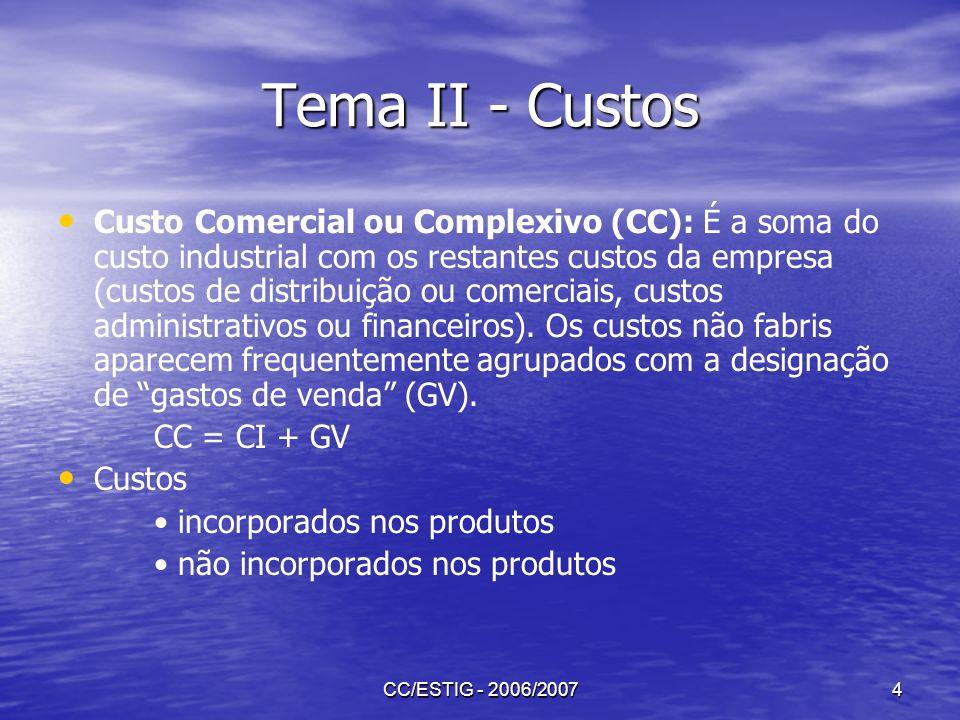 Tema II - Custos