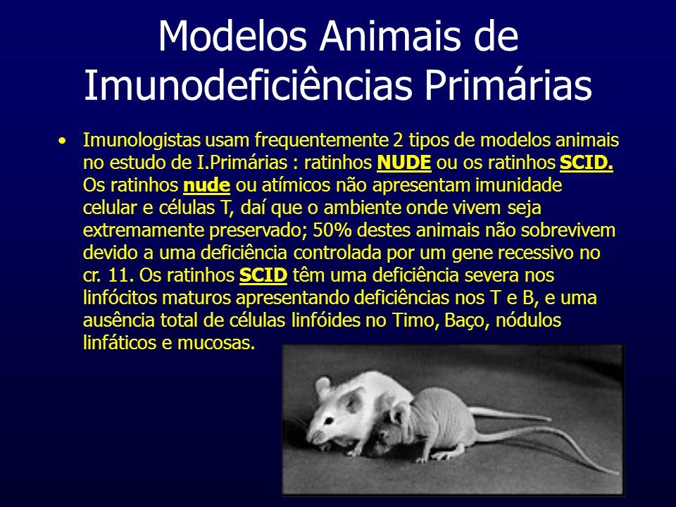 Modelos Animais de Imunodeficiências Primárias