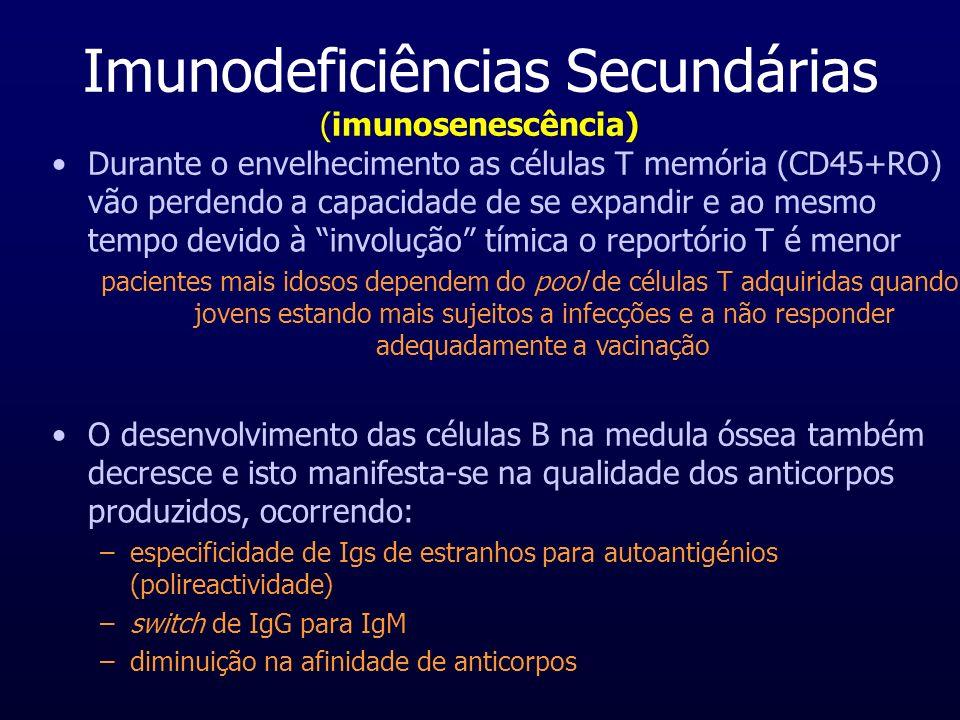 Imunodeficiências Secundárias (imunosenescência)